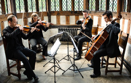Hire Strelitzia String Quartet