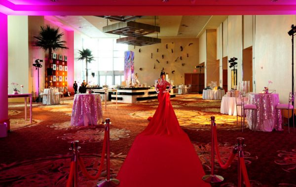 Red Carpet Dress Lady