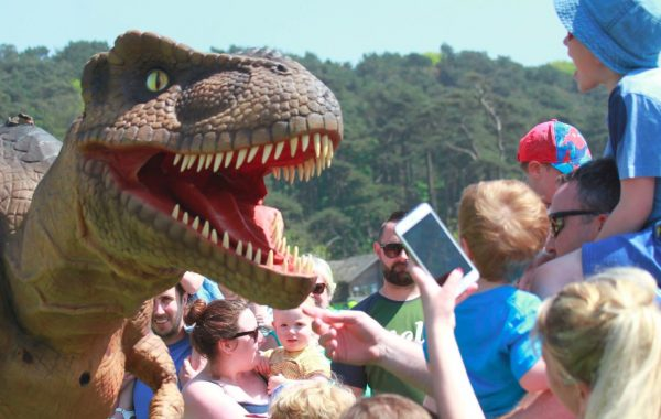 Hire a T-Rex Dinosaur