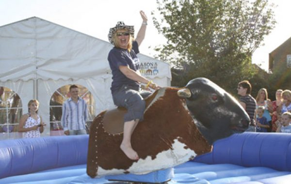 Bucking Bronco Rodeo Bull