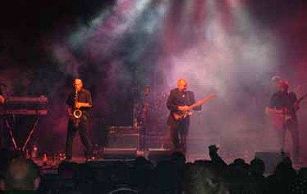 UB40 Tribute Band- Rats In The Kitchen